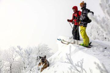 ski touring jak zacząć